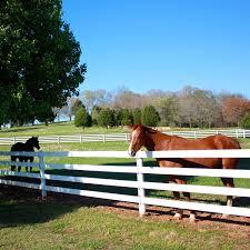 Centaur Centaur Htp Flexible Fence Rails Hoover Fence Co