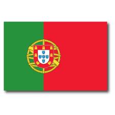 Portugal Portuguese Flag Car Magnet Decal 4 X 6 Heavy Duty For Car Truck Suv Walmart Com Walmart Com