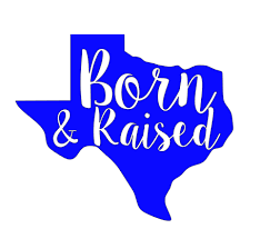Born And Raised Texas Car Decal On Storenvy