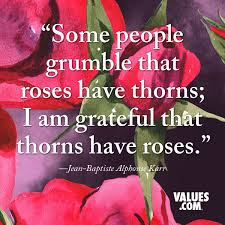 some people grumble that roses have thorns i am grateful that