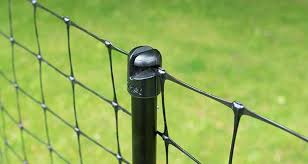 Poultry New Omlet Chicken Fencing Contain Your Hens Appletons