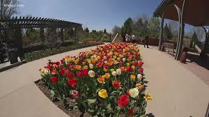 denver botanic garden can reopen on
