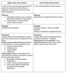 sensation testing peripheral nerve