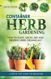 container herb gardening how to plant