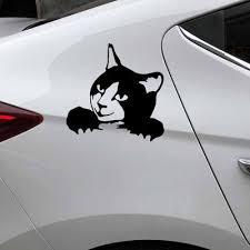 Creative Car Sticker Domestic Cat Cartoon Animal Decal Decor Vinyl Black 23x15cm Buy At A Low Prices On Joom E Commerce Platform