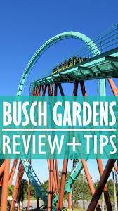 visiting busch gardens ta bay a