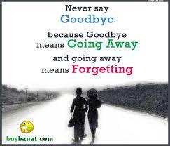 goodbye quotes and goodbye sayings boy banat