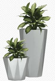 Dumb Cane Illustration Flowerpot Etsy Wall Decal Succulent Plant Potted Plant S Leaf Vase Plants Nature Plant Png Nextpng