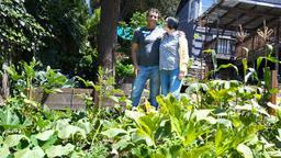 vallejo farmers - News Break