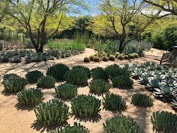 picture of sunnylands center gardens