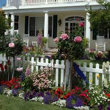 Dress Up The Edges Of Your Yard Costa Farms