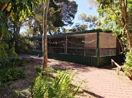 Whyalla | Ada Ryan Gardens