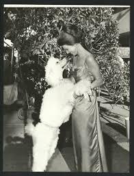 1962 PRESS PHOTO Jacqueline Beer on Warner Bros '77 Sunset Strip - mjx05263  - $19.99 | PicClick