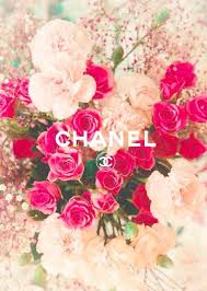 coco chanel wallpapers wallpaper cave
