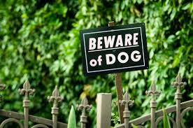 Surprising Yard Features That Hgtv Says Will Keep Burglars Away From Your Home