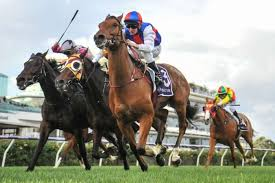 Geelong Cup preview and tips: Runner-by ...