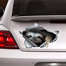 Amazon Com Sloth Decal Car Decoration Funny Sloth Sticker Vinyl Sticker For Cars Windows Walls Fridge Toilet And More 6 Inch Kitchen Dining