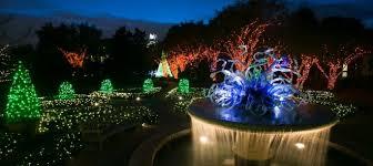 garden lights at atlanta botanical