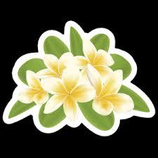Plumeria Flower Stickers Plumeria Car Decals Car Stickers
