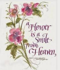 a flower is a smile from heaven and is designed by god
