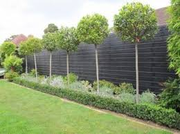 Stunning Privacy Fence Line Landscaping Ideas 17 Garden Fence Panels Garden Privacy Garden Fencing