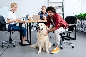 Oggi si celebra la Giornata Mondiale del cane in ufficio