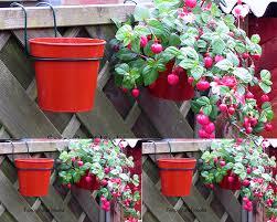 Colored Metal Galvanized Hanging Flo Home Garden Metal Iron Cheap Flower Pots Planters Wholesale Jiangmen Yuansheng Hardware Co