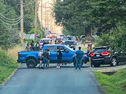 Hundreds Of Blm Supporters Storm Snohomish County Neighborhood To Protest At Seattle Police Chief Carmen Best S Home Lynnwood Times
