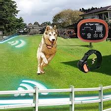 Dr Tiger 2 Receiver Electric Dog Fence With Rechargeable Shock Collar Wire In Ground Invisible Dog Or Cat Containment Fence System W01 G3 Pets Nerds
