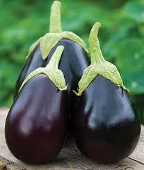 how to grow eggplant vegetable seeds