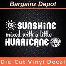 Vinyl Decal Sunshine Mixed With A Little Hurricane Funny Car Laptop Sticker Ebay