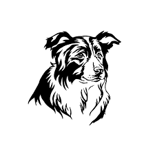 Border Collie Dog Decal Custom Vinyl Car Truck Window Sticker Dog Decals Border Collie Dog Collie Dog