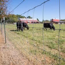 Bekaert Field Fence Gaucho Bekaert Classic