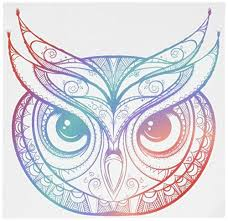 Divine Designs Beautiful Rainbow Ombre Henna Pattern Owl