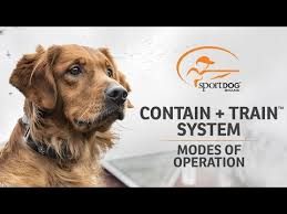 Sportdog Brand Contain Train System Modes Of Operation Youtube