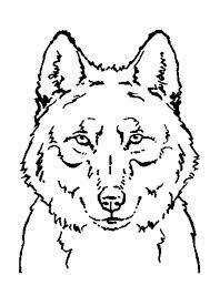 Boze Wolf Kringspelletje Www Activitheek Nl Kleurplaten