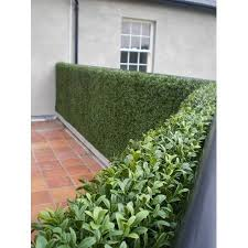 Uland Artificial Boxwood Greenery Hedges Panels Decorative Privacy Fence Screening Uv Proof 100 Fresh Pe 20 X20 Pc Pack Of 12 Green Jade Walmart Co In 2020 Garden Fence Panels Artificial Hedges Artificial Boxwood
