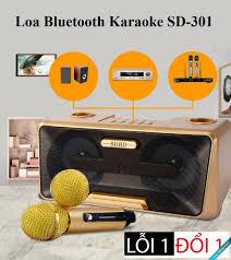 Loa Karaoke SD-301 kèm 2 mic không dây, Loa Đôi Bluetooth Không Dây Kèm Mic