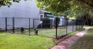 How To Soften The Look Of A Black Chain Link Fence News Blog Longfence