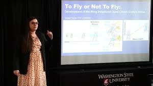 Abigail Hayes--Development of the Wing Polyphenic Sand Cricket, Gryllus  firmus - YouTube