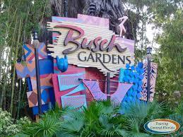 busch gardens ta