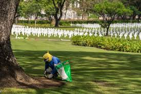 gardener at american cemetery and