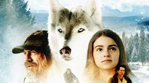 Il richiamo della foresta 3D (2009) - MYmovies.it