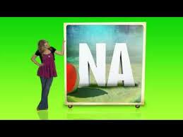 2013 Disney Channel Summernight