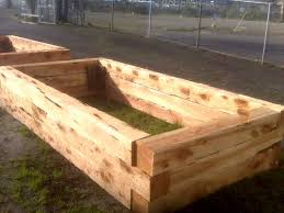 juniper raised beds building raised