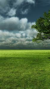 nature green wallpaper android 2020