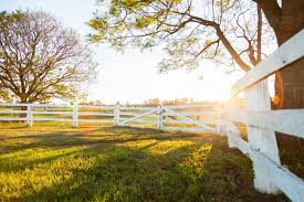 Image Of White Wooden Post And Rail Fence And Gate Backlit With Sun Flare Austockphoto