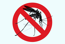 natural insect mosquito repellents