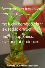 Pin by Adeline Hughes on Interior Decor (With images) | Feng shui, Feng  shui tips, Feng shui plants