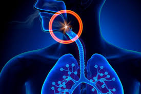 Image result for sleep apnea image